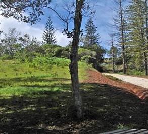 Great Subdivision, 1 block remaining ~ Norfolk Island