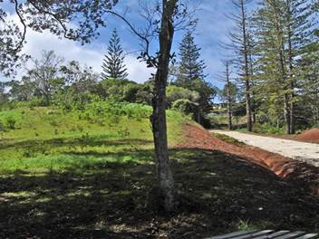 Great Subdivision, 1 block remaining ~ Norfolk Island