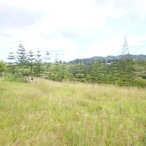 6 Acres on 2 Titles Land – Norfolk Island