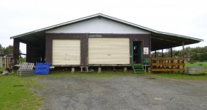Large Shed with Stables