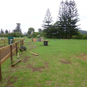 Lovely Grazing Land with adjacent Stables ~ Norfolk Island